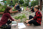 Earlham College students Brianna Crowley and Kelsey Given learn about New Zealand plants. Photo/ Stuart Munro