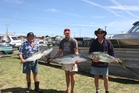 BIG THREE: Seamus Murphy's 17.34kg kingfish [centre] was a winner. He's flanked by his dad, Kevin Murphy [left], and Chris Carrick.