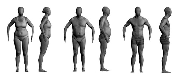 Rank the bodies in order of fatness.