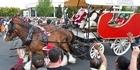 Watch: Rotorua Christmas Parade