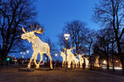 Swedes honour traditions with clockwork precision and Christmas celebrations are no exception. Photo / 123RF
