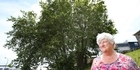 Watch: Former councillor in last minute bid to overturn council's tree decision