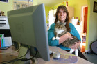 Kim Buchanan started Pets on the Net, a website posting details of lost and found animals, after her cat went missing. Photo / Sylvie Whinray