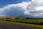 The sun has arrived but may be accompanied by rain and possibly even isolated thunderstorms in the north and west on of the North Island. Photo / Paul Taylor