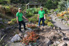 Te Puna Quarry Park volunteers Jennifer Day (left) and Lynn Elshaw were disheartened to find a big hole where a pony tail palm once stood. PHOTO/SUPPLIED