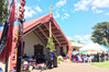 Hundreds of mourners have gathered at Te Whetu o te Rangi Marae in Tauranga today to farewell highly respected Maori leader Awanui Black, who died on Wednesday. Photo/Ruth Keber