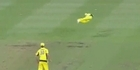 Watch: Watch: Steve Smith's unbelievable diving catch against the Black Caps