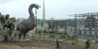 Watch NZH Local Focus: Giant Moa stops Waitomo traffic