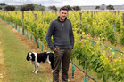 Caleb Dennis, Young horticulturist of year 2015, pictured at the Craggy Range vineyard near Hastings. Photo / File