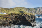 A general view over the Antipodes Islands - recently declared pest-free. Photo / Finlay Cox