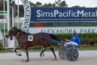 Mark Purdon drives Dream About Me to victory in the 2016 Auckland Cup at Alexandra Park. Photo / Peter Meecham