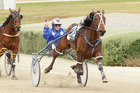 Dream About Me is still only four, has had only one serious open class start for a luckless sixth in the NZ Free-For-All. Photo / Harness Racing Victoria