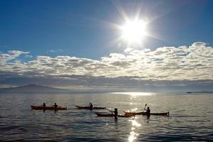 Te Ara Moana: Following the sea trail