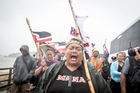 The hikoi from the anti-TPP protest in Auckland arrives at Te Tii Marae, Waitangi. Photo / Michael Craig