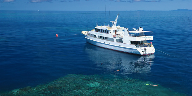 Spirit of Freedom offer a great live-aboard experience on the Great Barrier Reef. Photo / Spirit of Freedom