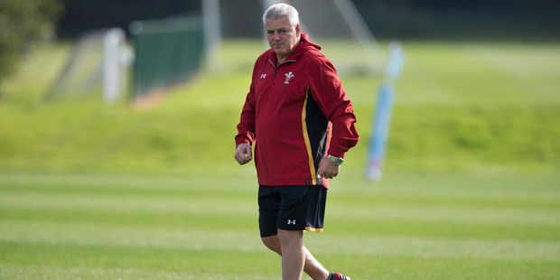 Gatland will be the favourite for the Lions role. Photo / Brett Phibbs