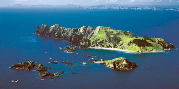 View of Motukawaiti Island in the Bay of Islands.
