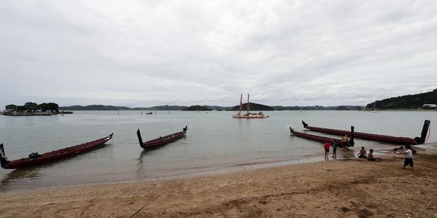 Waka line up at Te Tii Beach ahead of Waitangi Day. Photo / John Stone