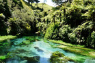 12 great Auckland walks to do