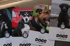 The New Zealand Aviation Security Service's explosive detector dogs appear on collector's cards.