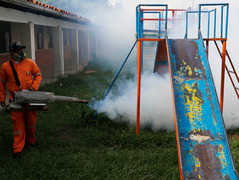 Zika virus: Should the Olympics be called off?