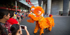 A lion dance draws the crowds at the base of the Sky Tower. Photo / Chris Loufte