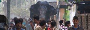 Rampaging elephant smashes homes
