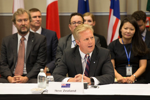 New Zealand Minister of Trade, Todd McClay. Photo / Nick Reed