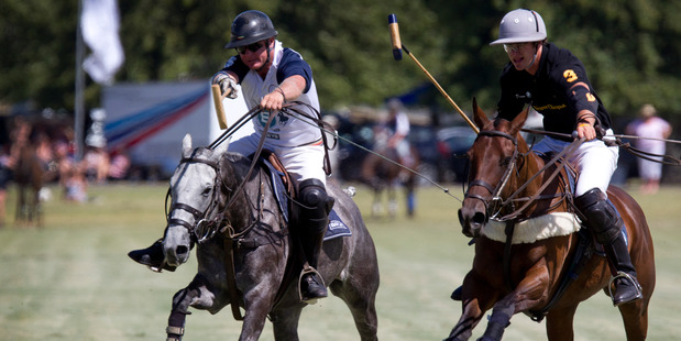 Simon Wilson (below) expects between 6000 and 7000 people at the the NZ Polo Open in Clevedon on February 21. Photo / Sarah Ivey