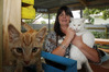 CAT WOMAN: Vicky Mckay with just a few of the cats she has likely saved from death. PHOTO/PAUL TAYLOR.