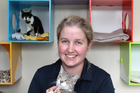 Lucy Plastow, shelter support staff, Hastings and Districts SPCA, Hastings, with Diamond, in the cat room.