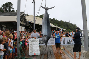 Craig Johnson and Kurt Bennetto caught this huge black marlin.