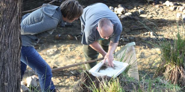 Heather Atkinson and Russell Death sampling a stream. PHOTO/SUPPLIED