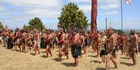 Up to 400 warriors took part in last month's Battle of Ruapekapeka Pa commemorations. Photo / Peter de Graaf