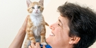 De-sexing touted as stray cat solution