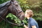 What horses can sense from humans