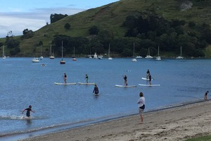 Shark watch: Sightings at the Mount