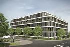 New Neighbourhood. 40-42 Rosebank Road, Avondale. Image / supplied