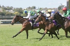 Vinnie Colgan gets Rangipo home in the Avondale Guineas. Photo / TRISH DUNELL