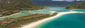 """The beach is listed with real estate company Bayleys, which describes it as """"picturesque"""". Photo / Supplied"""