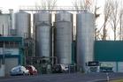 Fonterra's Hautapu dairy factory will produce lactoferrin. Photo / Christine Cornege