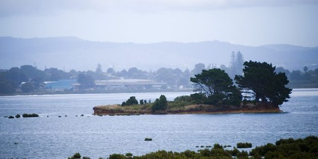 Ngarango Otainui lies in the inland area of the Manukau harbour, 5km from Auckland International Airport.  Photo / Trade Me.