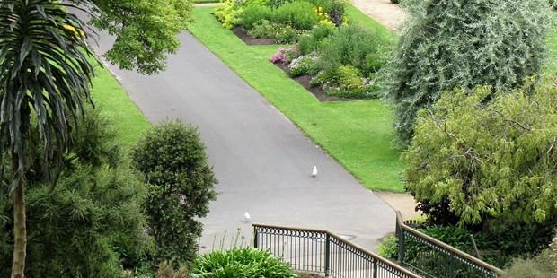 The man fell at Dunedin's Botanic Garden this morning. Photo / Sandra Simpson
