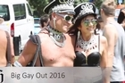Big Gay Out Festival