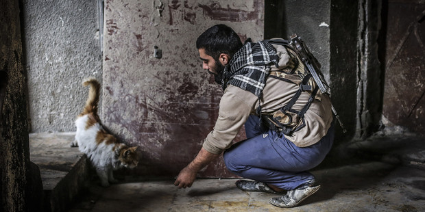 A member of Syrian opposition group linked to Damascus Front is seen with a cat in a damaged building as he takes position against Syrian regime forces in Aleppo. Photo / Getty Images