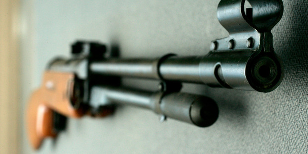 A Chinese made Air Rifle Model. Photo / Herald on Sunday