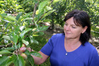 Hawkes Bay orchardist Lesley Wilson is happpy to be through the