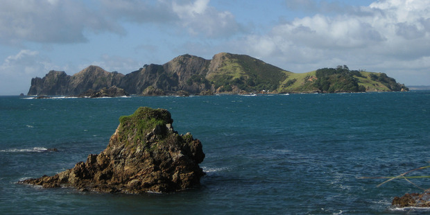 The Government should buy Motukawaiti Island, former Maori Affairs Minister Dover Samuels says.