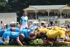 Blues halfback Billy Guyton puts the ball into the scrum. Referee was Chris Pollock. Photo / Christine McKay