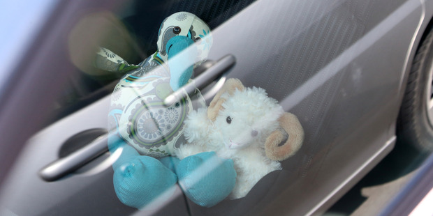 An increase in the number of pets and children locked inside vehicles this summer has concerned the Automobile Association. Photo / Michael Cunningham
